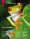 2012-Frosch